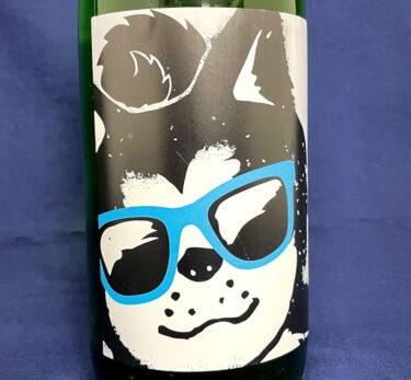 让夏天酷起来!戴墨镜的秋田犬成了日本酒的标签