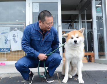 """Hokuto shows affection only to me"" – Yoshida Shigehiko and his Akita Dog ""Hokuto"""