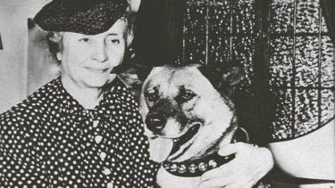 Deep and Beautiful Bond between Helen Keller and Akita Dogs