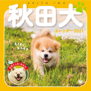 2021 Calendar Featuring Akita Dog Puppies in France