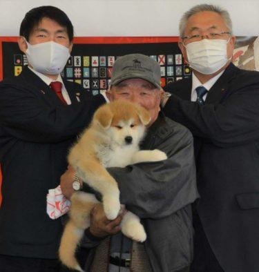 Keep Wild Boars at Bay with an Akita Dog!  Odate City Sent an Akita Puppy to Help Minamisoma City