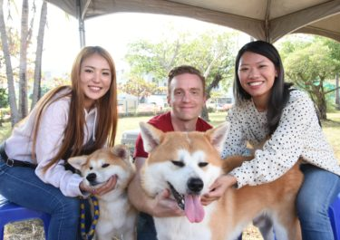 Report on the Akita Dog Preservation Society Taiwan Branch Exhibition: Growing up on a Warm Island Surrounded by Lots of Love