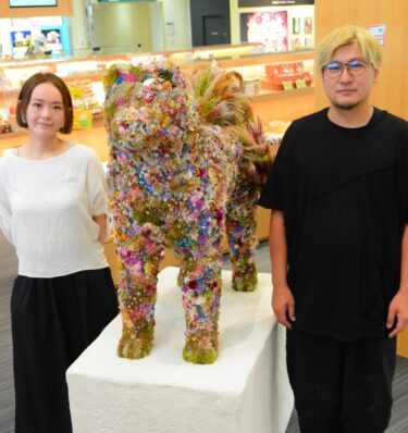 Come and Meet a Stylish Akita Dog! Celebrating 40 Years of Operation at Akita Airport
