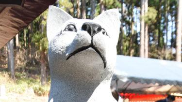「もう一匹の忠犬」語り継ぐ 大館市の「老犬神社」