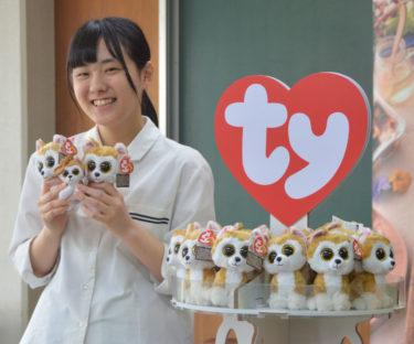 大きな目の秋田犬「ロイ」 高校生が縫いぐるみの名前考案