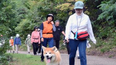 「マサ」と一緒に散歩しませんか 三種町の法人に子犬、体験プログラム売り込み本格化