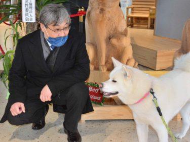「モンゴルの人は秋田犬を好きになると思う」、バッチジャルガル駐日大使が大館初訪問