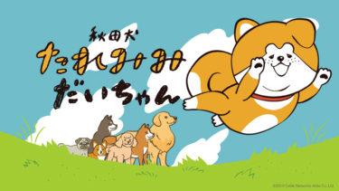 「だいちゃん」が仲間と悪に立ち向かう! CNA制作アニメ、シーズン2突入