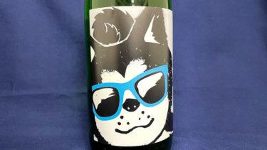 夏はクールに! 日本酒ラベルにサングラス姿の秋田犬