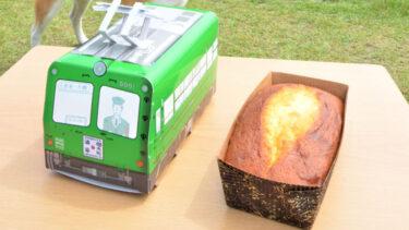 「青ガエル」の中にふんわりケーキ 大館に新たな土産品